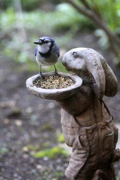 27 Awesome Garden Statues To Add An Artistic Your Outdoor Garden Statues, Garden Sculpture, Beautiful Birds, Beautiful Gardens, Tier Fotos, Garden Ornaments, Blue Jay, Dream Garden, Yard Art