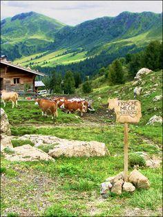 Fresh milk in Trentino... by mau_tweety