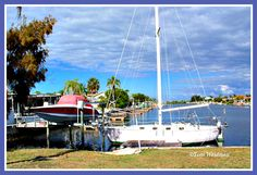 Gulf Harbors - New Port Richey FL. On the Gulf of Mexico. Toni Weidman, http://activerain.com/blogsview/4709659/gulf-harbors-in-new-port-richey-fl#19253176