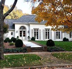 Single Story Home Exterior french home with gray shutters, transitional, home exterior | home