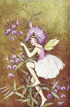 Классика детской иллюстрации - Австралийский иллюстратор Ida Rentoul Outhwaite (1888 - 1960) (313 фото)
