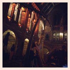 Twitter / Gymboree_W4: Lying in great hall @NHM_London ...