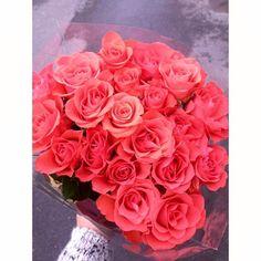 ❤️ roses, bouquet
