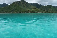 Take an easy day trip from Tahiti with a Mo'orea lagoon excursion. Heaps of fun for the whole family, great value for money - we loved it!