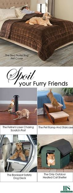 Pamper your furry friends with the best, the only, and unexpected pet products from Hammacher Schlemmer.