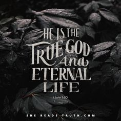 """The struggle with our flesh is real, but take heart: God isn't finished with us yet. We are already """"in him who is true"""" (1 John 5:20). He is the only way to eternal life, and we are only just beginning to taste the fullness that awaits (Philippians 3:20)."""