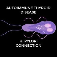 Is there a link between thyroid disease and helicobacter pylori? As a stealth infection, Helicobacter pylori may be a trigger for autoimmune thyroid disease