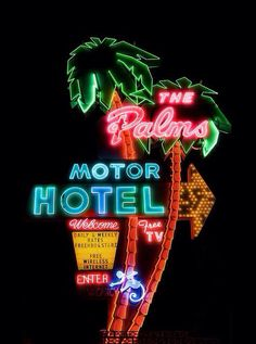 The Palm Motor Hotel // neon