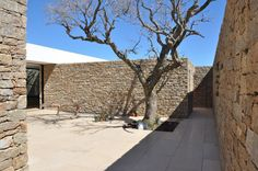 Architecture, Rustic Leafless And Dried Tree At The Buenos Mares Villa Covered Porch With Exposed Stone Fence And Concrete Tile Pavings ~ Beach House Architecture with Private Pool Contemporary Architecture, Landscape Architecture, Architecture Design, Casa Patio, Stone Houses, Construction, House Design, Courtyards, Stone Fence