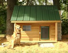 Doggies dream house. Gotta build one of these
