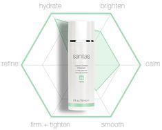 Lemon Cream Cleanser | Sanitas Skincare Lemon Cream, Cleanser, Skin Care, Personal Care, Lime Crime, Self Care, Lemon Curd, Cleaning Agent, Skincare Routine