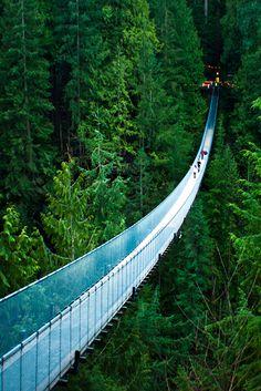imalikshake:  Capilano Suspension Bridge byMichelle Lee