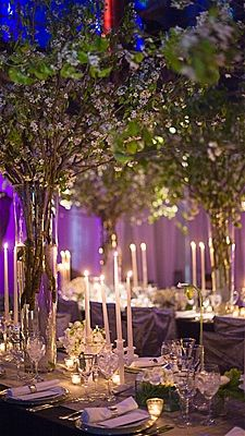most beautiful wedding receptions - Google Search