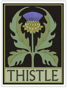 Thistle Tile by Wildflower Graphics Art And Craft Design, Art Design, Botanical Drawings, Botanical Prints, Art And Illustration, Jugendstil Design, Kunst Poster, Motif Floral, Art Graphique