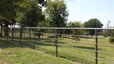 Pipe Fence