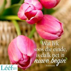 Me Quotes, Motivational Quotes, Printable Quotes, Afrikaans, Inspirational Message, Wisdom, Faith, Words, Trust