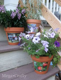 Mega•Crafty: Photo Flower Pots