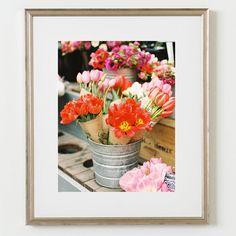 flower photos, flower photography, film photography, film photos, san francisco, flower decor, vibrant flowers, spring flowers, spring tulips, travel photography, travel photos, travel prints, fine art print shop, fine art print, wall decor