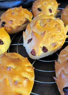 hedgehog rolls...I'll have to make these for M since he is getting a hedgehog today!