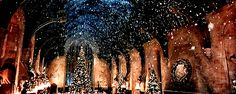 The perfect Hogwarts Harry Potter Animated GIF for your conversation. Discover and Share the best GIFs on Tenor. Harry Potter Gif, Harry Potter Studios, Harry Potter Wallpaper, Hogwarts Christmas, Harry Potter Christmas, Merry Christmas, Christmas Baby, Winter Christmas, Christmas Trees
