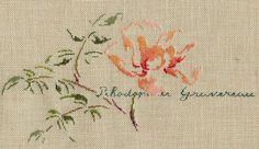 marie therese saint aubin cross stitch - Google Search