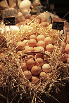 Eggs @ La Boqueria (Mercat de St. Josep), Barcelona La Boqueria Barcelona, Barcelona Food, Barcelona Catalonia, Egg Tortilla, Storing Eggs, Magic Day, Breakfast Specials, Milk And Cheese, Market Garden