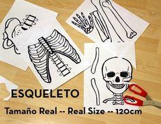 FUENTE: http://www.3macarrons.com/2013/12/esqueleto-en-tamano-real-imprimible.html?utm_source=feedburner&utm_medium=feed&utm_campaign...