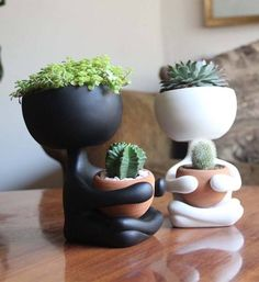 With a name that has been inspired from the legendary vocalist of Led Zeppelin, it's expected that Robert Planta will be a unique home decor item. To be tr Cacti And Succulents, Potted Plants, Garden Plants, Indoor Plants, House Plants, Succulent Planters, Small Plants, Cactus Plante, Pot Plante