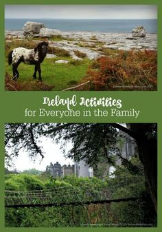 An overview of Ireland activities for everyone in the family to enjoy for your next family vacation to Ireland.