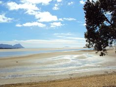 Gorgeous one day, perfect the next!  #newzealand summer on the way! Bring the kids when you #elope the #kiwi way.