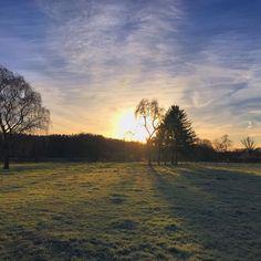 Also morgen morgen soll ja angeblich die Sonne hier bei uns endlich mal wieder scheinen. Ich trage mich ja schon wieder mit Auswanderungsgedanken. Dieses Dauergrau erträgt auf die Dauer kein Mensch. . . . . . #4moresunrises #skyporn #honoluluimcoming #sunrise #greydecember #nofilter #latergram #sunrise #sun #sunrise_sunsets_aroundworld #sunriselovers #sunriselovers #pickoftheday #pickoftheday #instagallery #instagallery