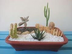 Oi minha gente linda! Hoje vou mostrar mais mini-jardins, minha mania que pode virar negocio, rsrs. É verdade, amigos descobriram meus mi... Cool Succulents, Succulents In Containers, Planting Succulents, Succulent Bowls, Succulent Arrangements, Serenity Garden, Cactus Terrarium, Dish Garden, Most Beautiful Gardens