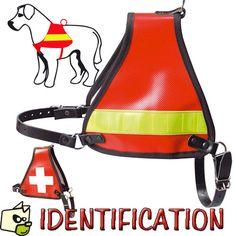 Harnais d'IDENTIFICATION pour chien à partir de 48e