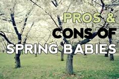 Pros and cons of having a spring baby. Baby Calendar, Real Talk, Babies, Spring, Babys, Newborn Babies, Baby Baby, Infants, Boy Babies