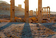 palmyra-syria-017.jpg 500×343 pixels