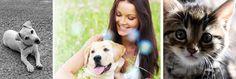 Anti-puces et anti-parasites naturels pour chiens et chats