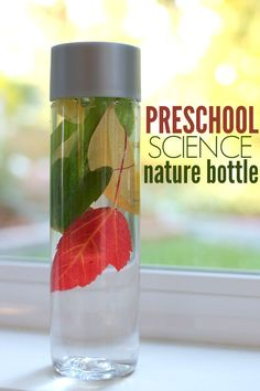 Want to know the trick to making the leaves float nicely and not clump? Check out the trick in this post! Preschool science activities - great for 2-5 year olds.