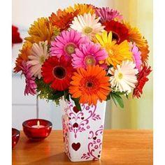LOVE this Gerbera Bouquet :)