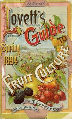 Vintage seed catalogue