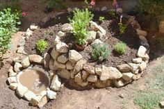 8 Reasons To Create Your Own Herb Spiral + How To Build OneAre fresh herbs not showing up in your dinners as often as you'd like? Buying specialty greens at the grocery store quickly gets expensive, but devo. Herb Spiral, Spiral Garden, Lawn And Garden, Herb Garden, Vegetable Garden, Garden Sheds, Permaculture, Organic Gardening, Gardening Tips
