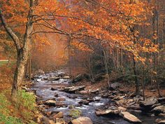 Great Smoky Mountains National Park  The park usually experiences an autumn leaf season of several weeks as fall colors travel down the mountain