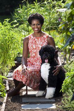 Official Portrait of First Lady Michelle Obama in her garden with Bo Obama Michelle E Barack Obama, Bo Obama, Barack Obama Family, Michelle Obama Fashion, Obamas Family, Obama 2008, Obama President, Joe Biden, Blake Lively