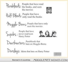 A quick analysis of all Harry Potter fans LOL @Callie Russell of course we're Purebloods :)