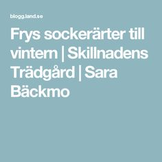Frys sockerärter till vintern   Skillnadens Trädgård   Sara Bäckmo
