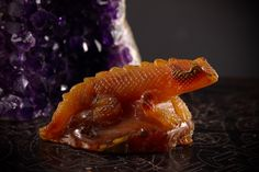 Carnelian Water Dragon- Courage, Strength, Desire by stoneandcrescent on Etsy  #carnelian #reptile #waterdragon #water #dragon #lizard #carved #spiritanimal #animal #meditation #black #goth #silver #sheen #quartz #spirit #crystals #minerals #chakra #crown #etsy #stones #sacredgeometry #sacred #geometry #holistic #nature #earth #travel #energy #reiki #porn #hippie #hipster #spiritual #newage #metaphysical