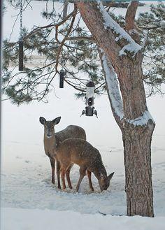 beautiful winter scene#glossyboxoriginalbeauty