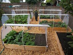 Way of turning your patio raised bed alternately into a greenhouse or covering with shade-cloth.