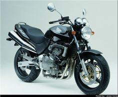 Drive a motorcycle  Honda Hornet 600