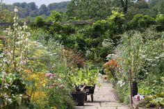 Image result for gravetye manor garden