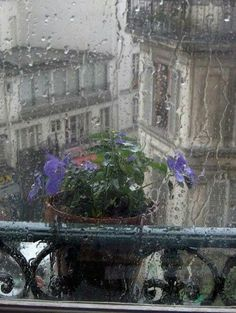 """audreylovesparis: """" Rainy day in Paris """""""